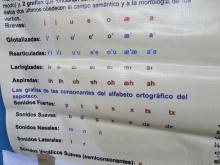 Alfabeto ortográfico del zapoteco del Valle de Oaxaca. Bajo la coordinación de Zeferino  Mendoza Bautista
